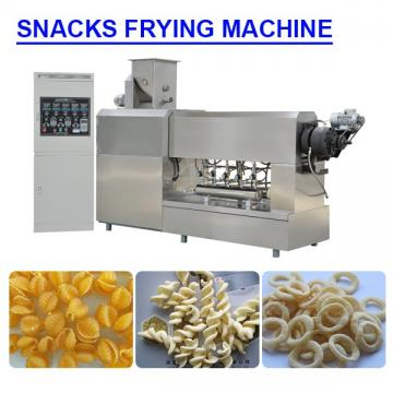Customzied Energy saving snacks frying machine with 100-120kg/h Capacity