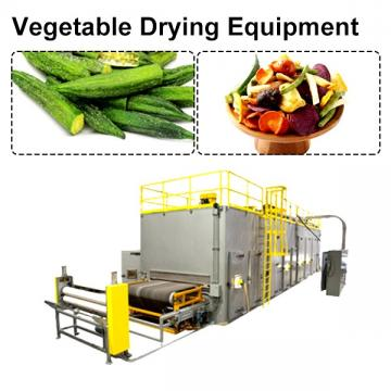 CE Certification Stainless Steel Vegetable Drying Equipment With Low Cost