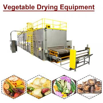 ISO Certification Automatic Vegetable Drying Equipment With Low Energy Consumption