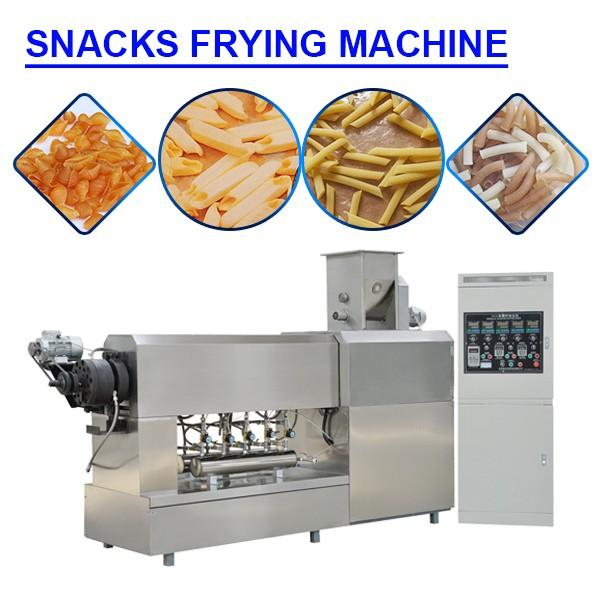 Higher Efficiency Stainless Steel Snacks Frying Machine With FDA Certification #1 image