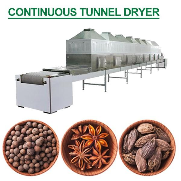 380V Stainless Steel Continuous Tunnel Dryer With Convenient To Wash #1 image