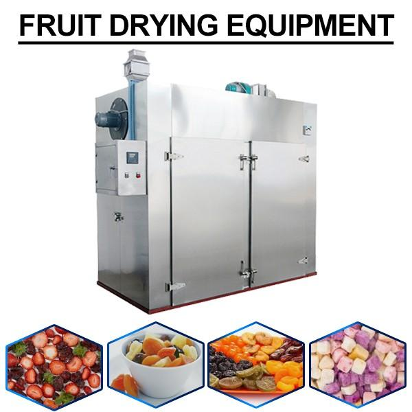 220v High Efficiency Fruit Drying Equipment With Durable Using #1 image